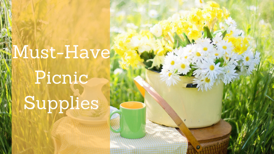 Must-have Checklist for Next Picnic
