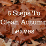 6 Steps To Clean Leaves This Autumn